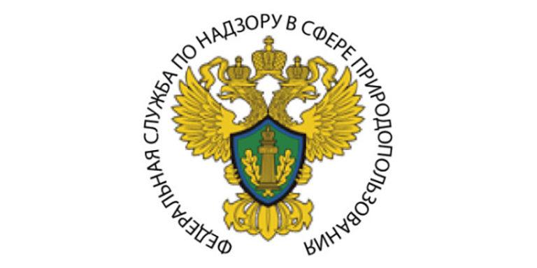 Росприроднадзор официально сообщил: возле аэропорта «Жуковский» свалки есть